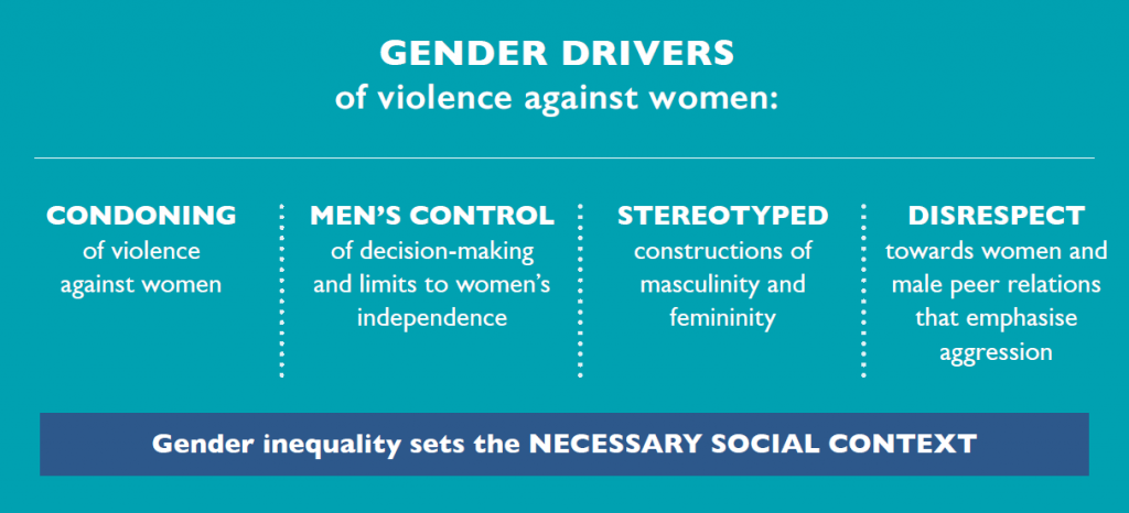 A graphic illustrating the gendered drivers of violence against women: Condoning of violence against women; Men's control of decision-making and limits to women's independence in public and private life; Rigid gender roles and stereotyped constructions of masculinity and femininity; Male peer relations that emphasise aggression and disrespect towards women.